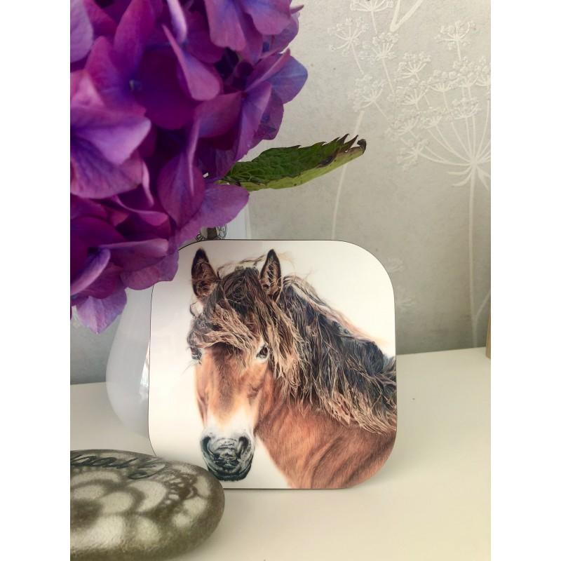'Breeze' exmoor pony coaster