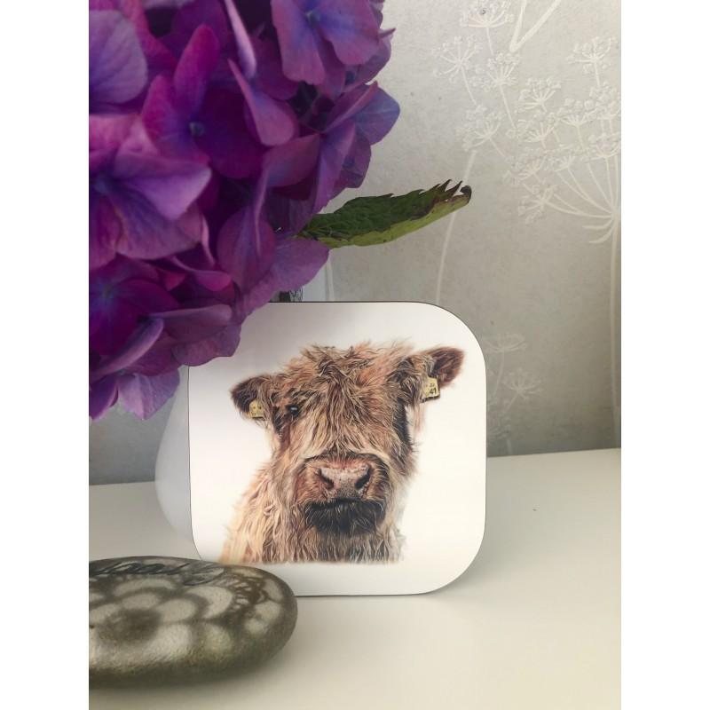 'Boop' cow coaster