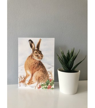 Winter Hare, greetings Card