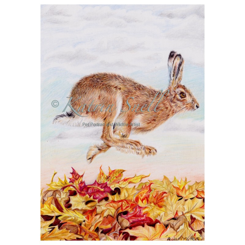 'Autumn Hare'