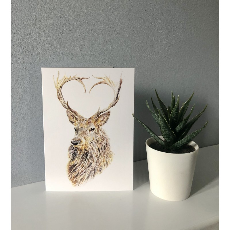 'Valentine' Greetings Card