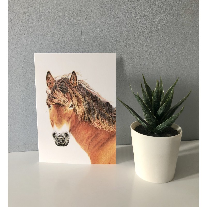 'Breeze' greetings card