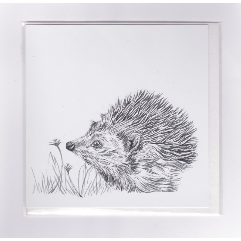 Prickles Greetings Card