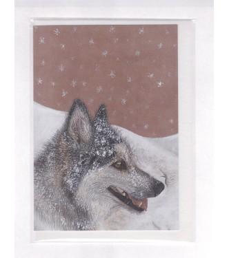 Snow Dog Greetings Card
