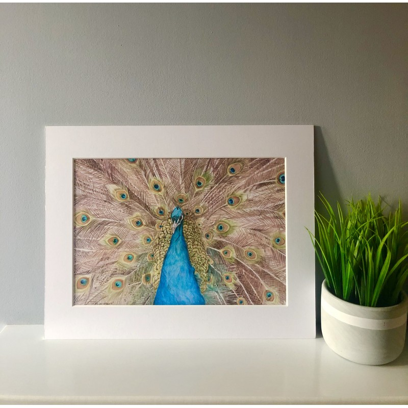 True Colours, A4 Limited Edition Giclee print (Mounted)