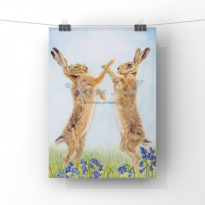 Spring Hare, 8x6 Limited Edition Giclee Print (unmounted)
