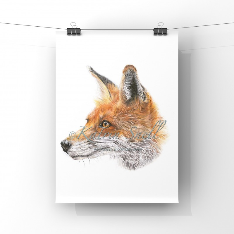'Mr Fox'  A4 Limited Edition Giclee Print (unmounted)