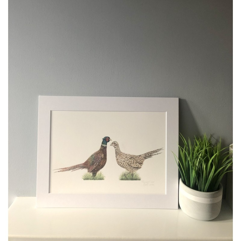 Pheasant Love, A4 Limited Edition Giclee  Print (Mounted)