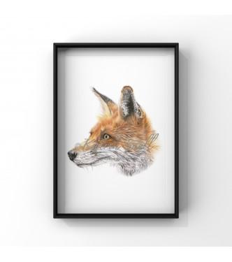 Mr Fox8x6