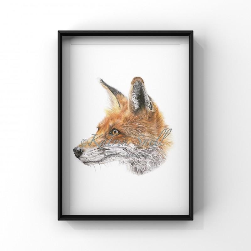 Mr Fox A4
