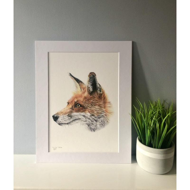 Mr Fox, A4 Limited Edition Giclee Print  (Mounted)