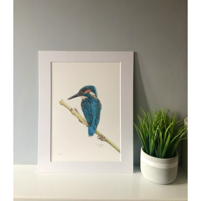 Mr Fisher, A4 Limited Edition Giclee Print (Mounted)