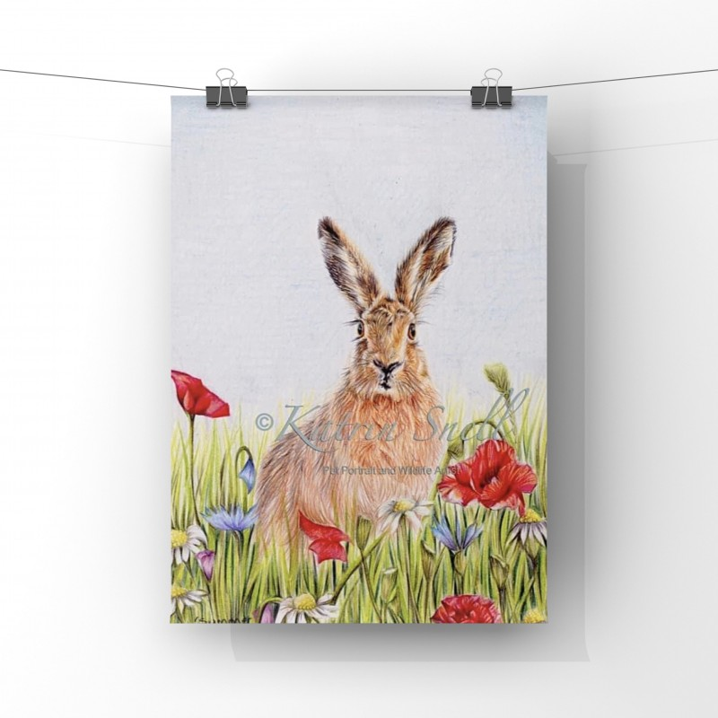 Summer Hare, 8x6 Limited Edition Giclee Print (Unmounted)