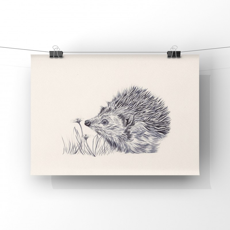 Prickles, 8x6 Giclee Print (unmounted)