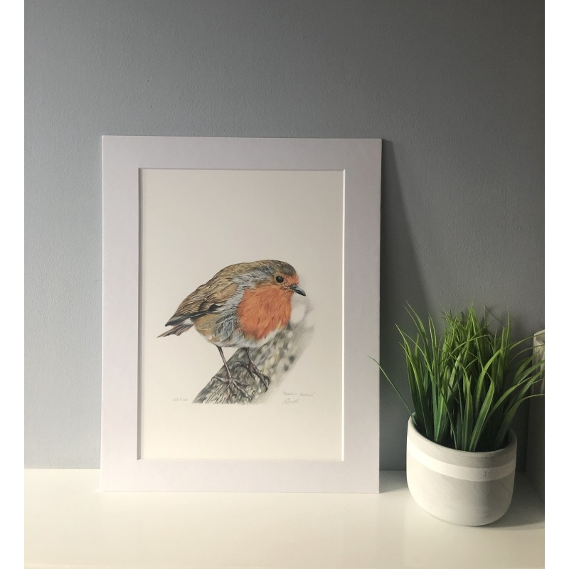 Rockin Robin, A4 Limited Edition Giclee Print (Mounted)