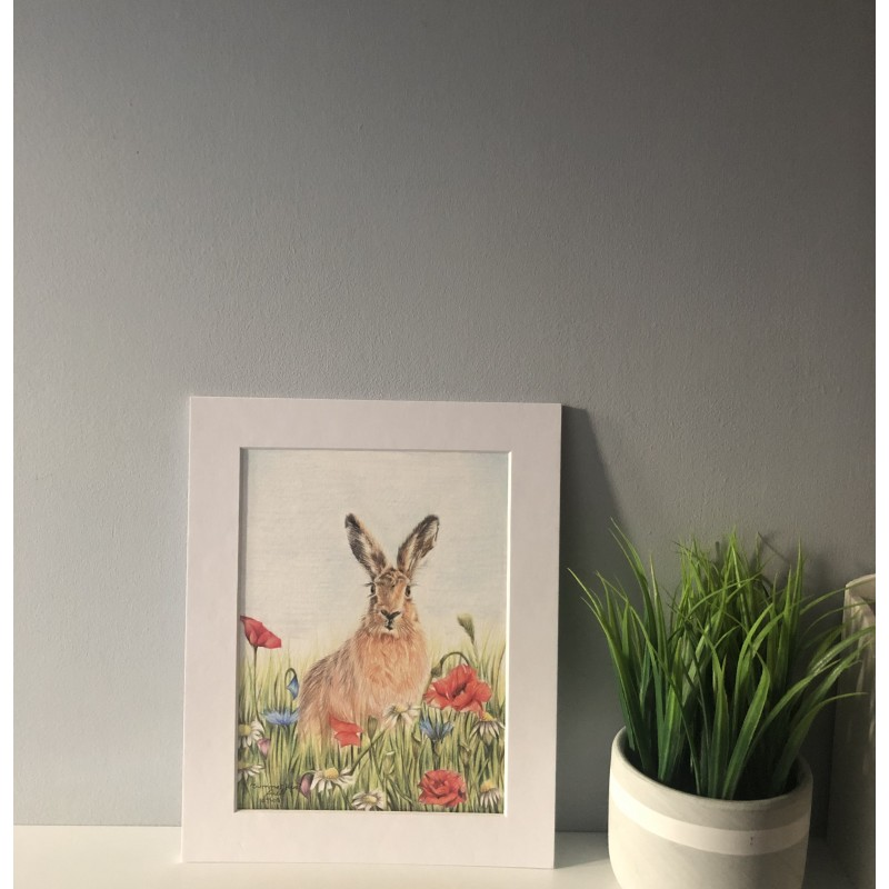Summer Hare, 8x6 Limited Edition Giclee Print (Mounted)