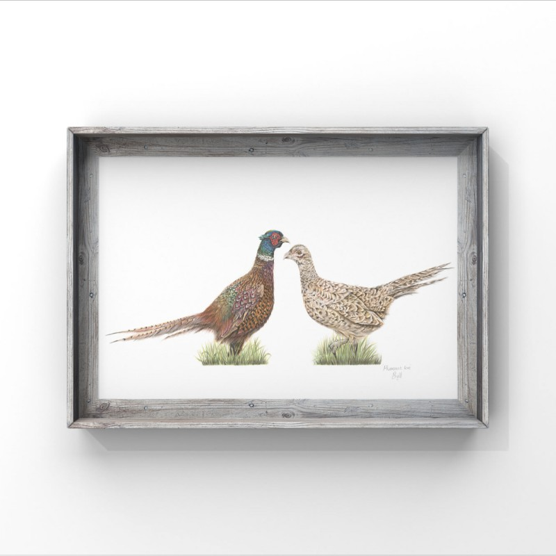 'Pheasant Love' Limited Edition Print