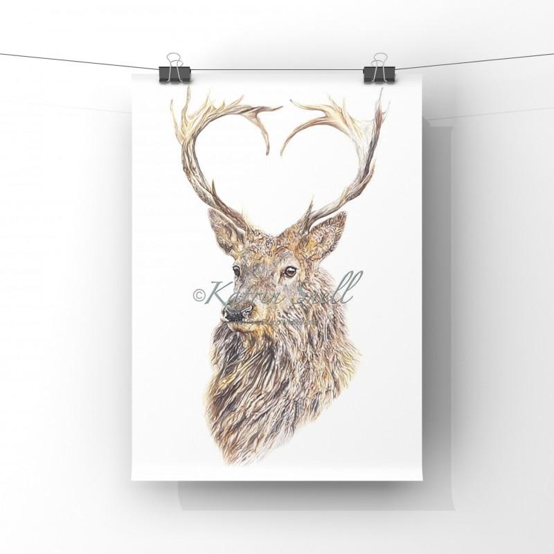 Valentine, 8x6 Limited Edition Print (unmounted)