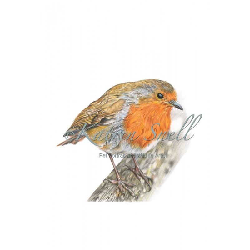 Rockin Robin A4