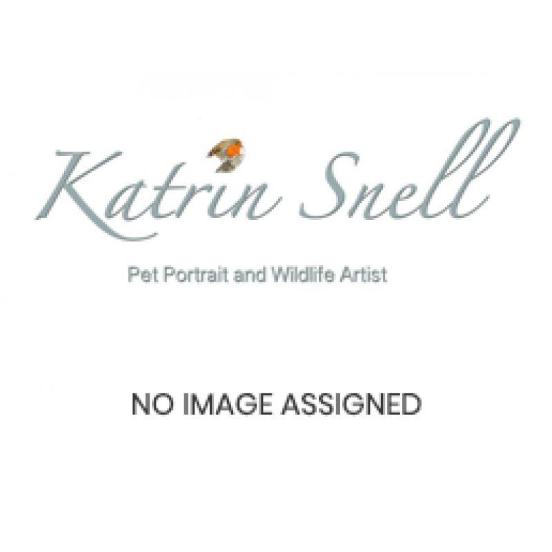 Pet portrait Gift Card (single) £225