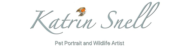 Katrin Snell | Pet Portrait and Wildlife Artist